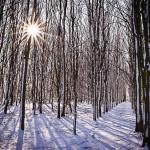Tag 16 - Winterstimmung